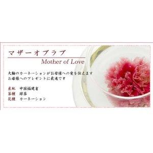 花茶 康乃馨