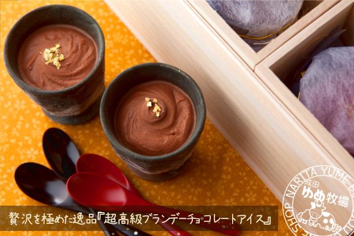 チョコアイス1