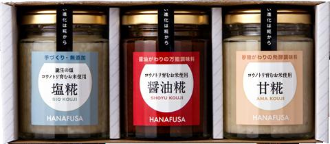 hanafusa_set3-2